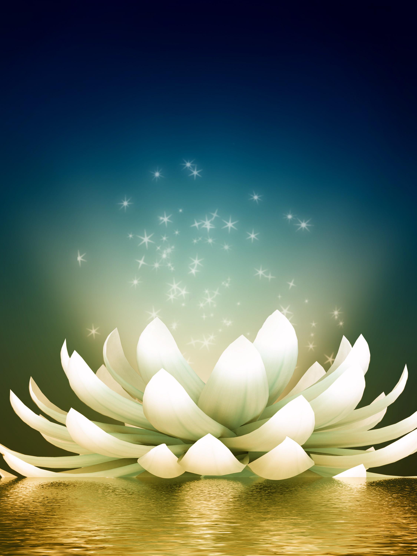 Beautiful meditation